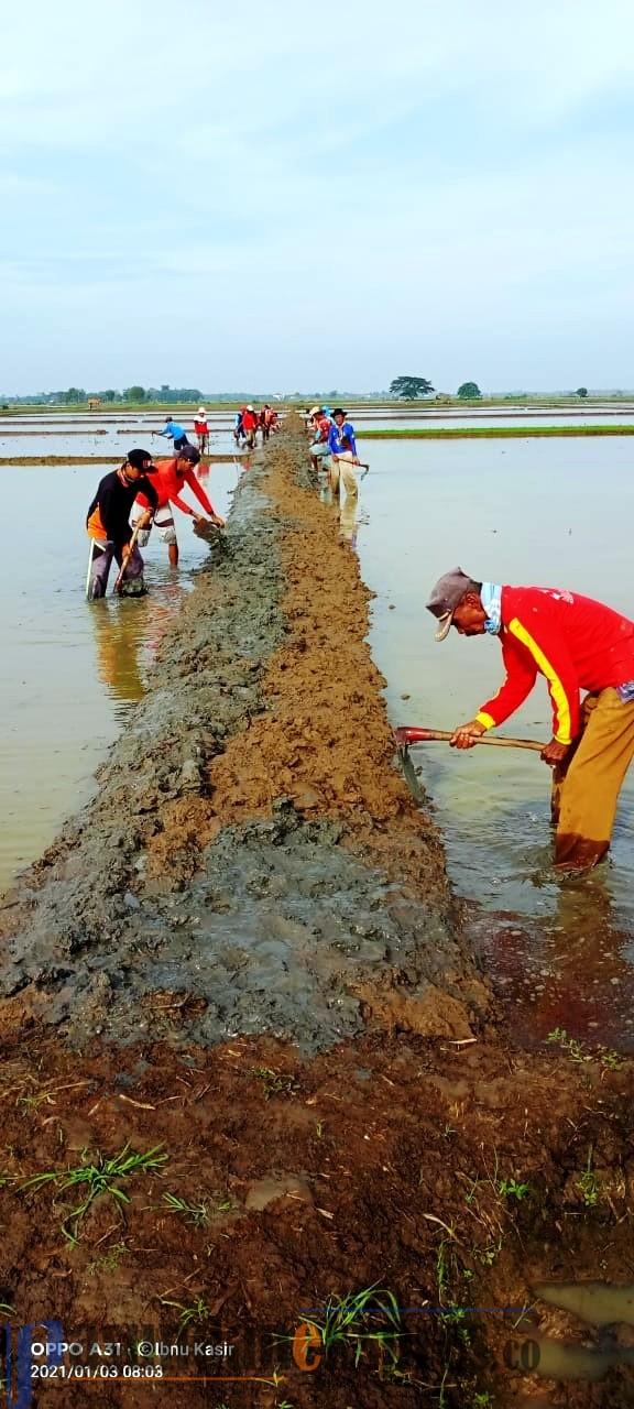 Pemerintah Desa Jatireja Kecamatan Compreng
